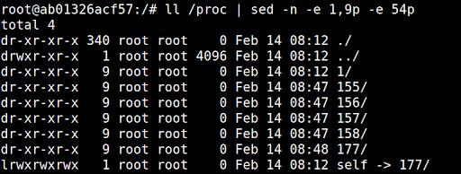 /proc/self は現在実行中のプロセス(ここではpid 177)のディレクトリへのシンボリックリンク