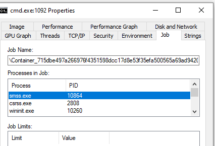 図3: ProcessExplorerでのコンテナ内プロセスのジョブの情報表示