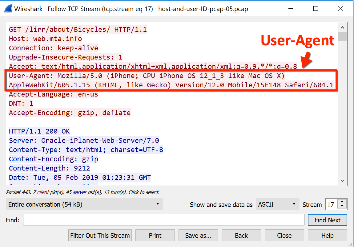 Using Wireshark: Identifying Hosts and Users
