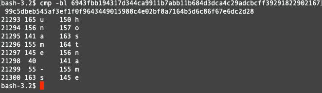 図3: 2つのSpeculoosサンプルをバイナリ比較し、システムのホスト名収集に異なるコマンドが使用されていることが示された結果