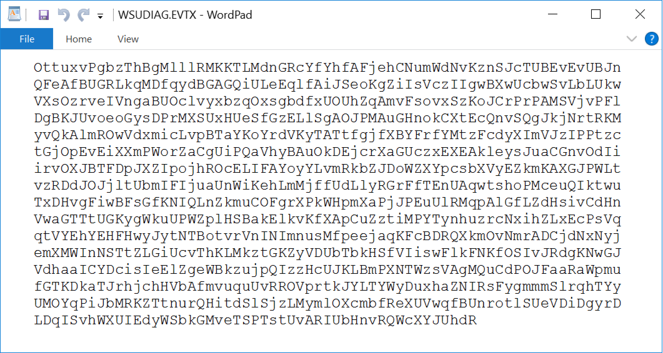Displayed in WordPad, we see the contents of the text file, which is a random string.