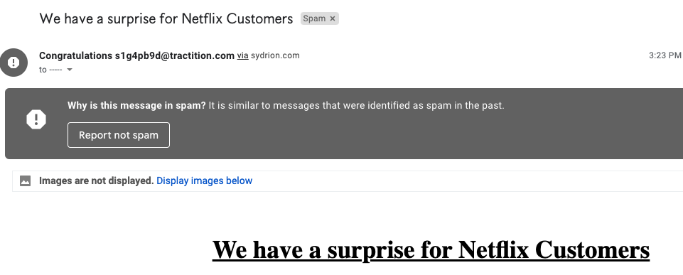 "This shows the social engineering email sent to users who click through on the cybersquatting domain we studied that targeted Portuguese-language Netflix. The email subject line reads, ""We have a surprise for Netflix customers."""