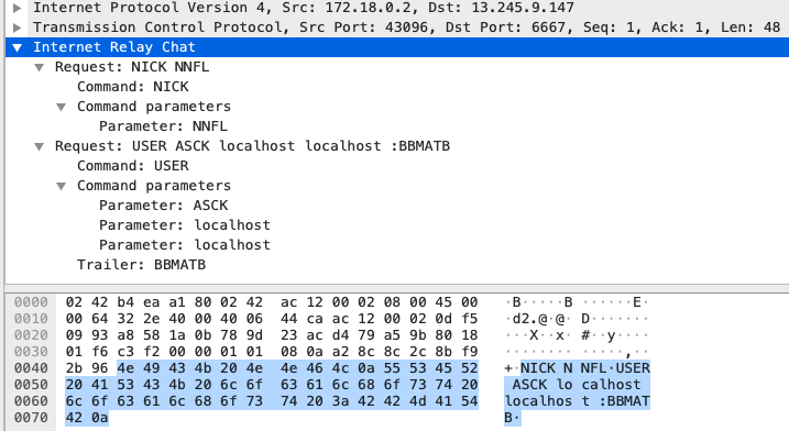 The screenshot shows the IRC traffic captured at the IRC client. The IRC server's metadata indicates that the server was deployed on Jan. 9, 2021, and there are around 220 clients currently connected to the server.