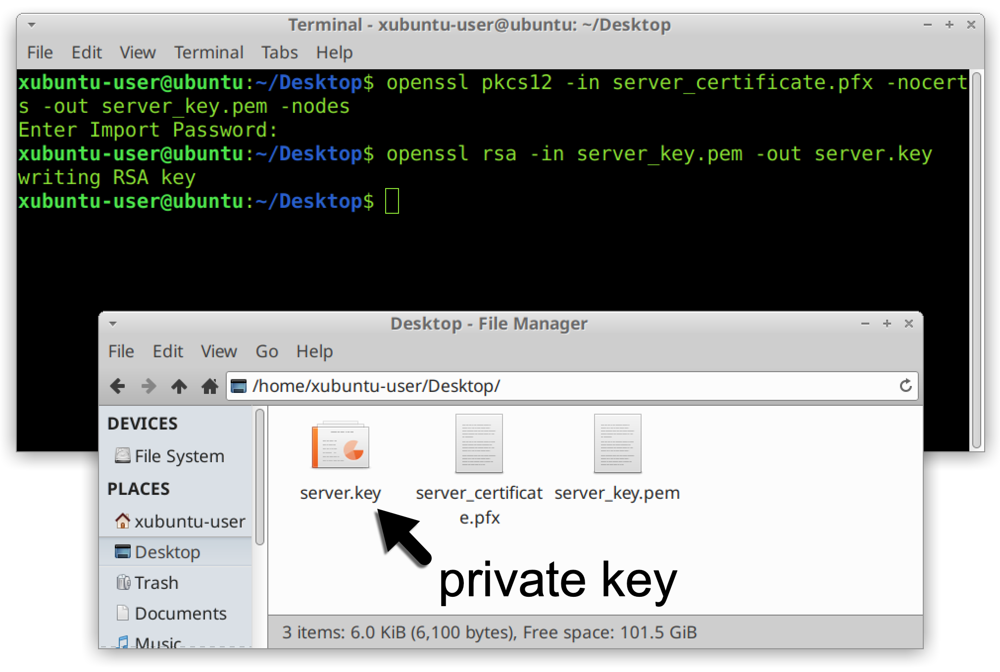 "The black arrow and label ""private key"" indicate where the private server key was extracted from the certificate."