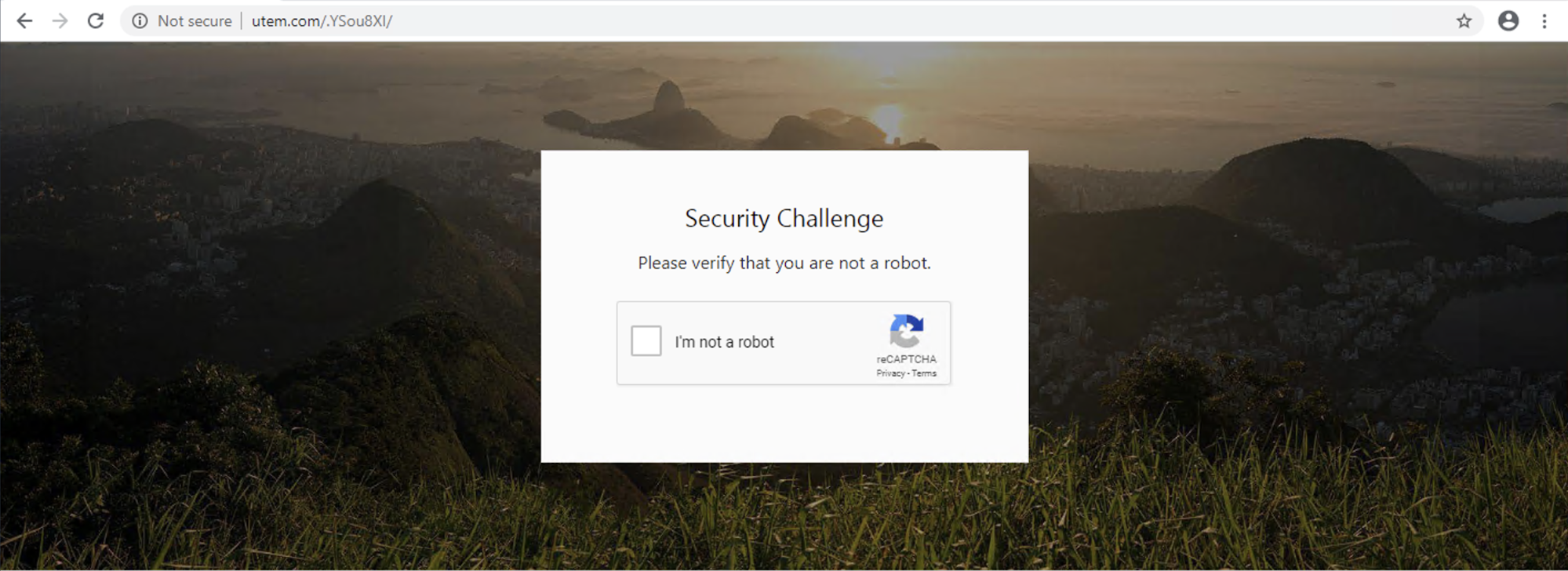A long-running phishing campaign uses the following CAPTCHA-protected phishing page. Users see the challenge shown when they visit the page.