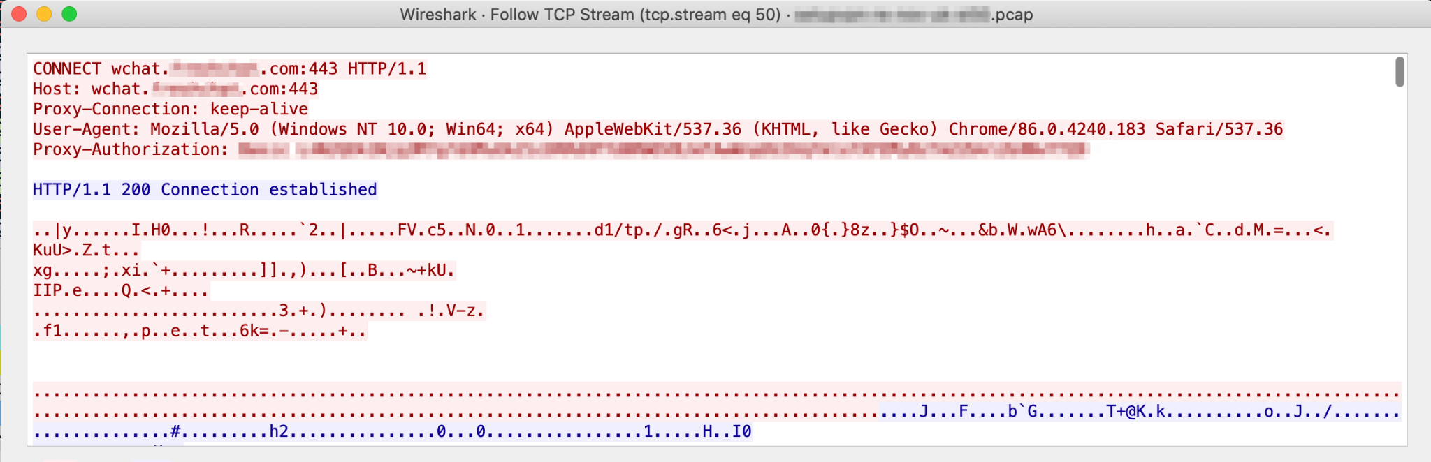 The HTTP proxy-authorization header in SetupVPN, shown here, can present helpful information about the SetupVPN app.